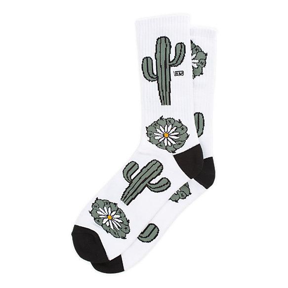 vans cactus