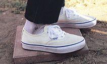 Vans®   Skate Classics