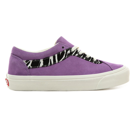 Zebra Bold NI Shoes | Vans